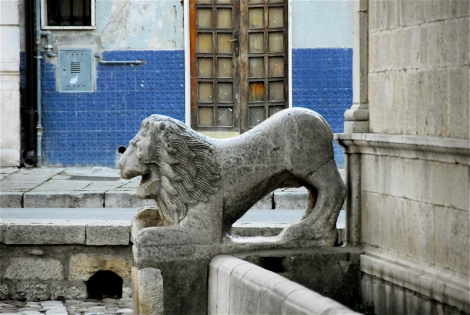 Lion, Angevin fountain (that I couldn't get a sharp focus here breaks my heart)